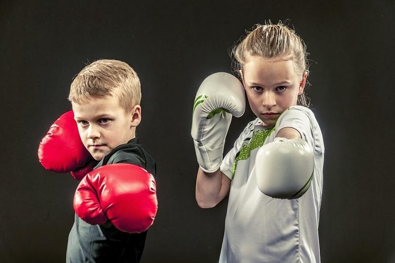 Картинки мальчик боксер